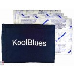 KoolBlues Umpire Chest Protector Cooling System